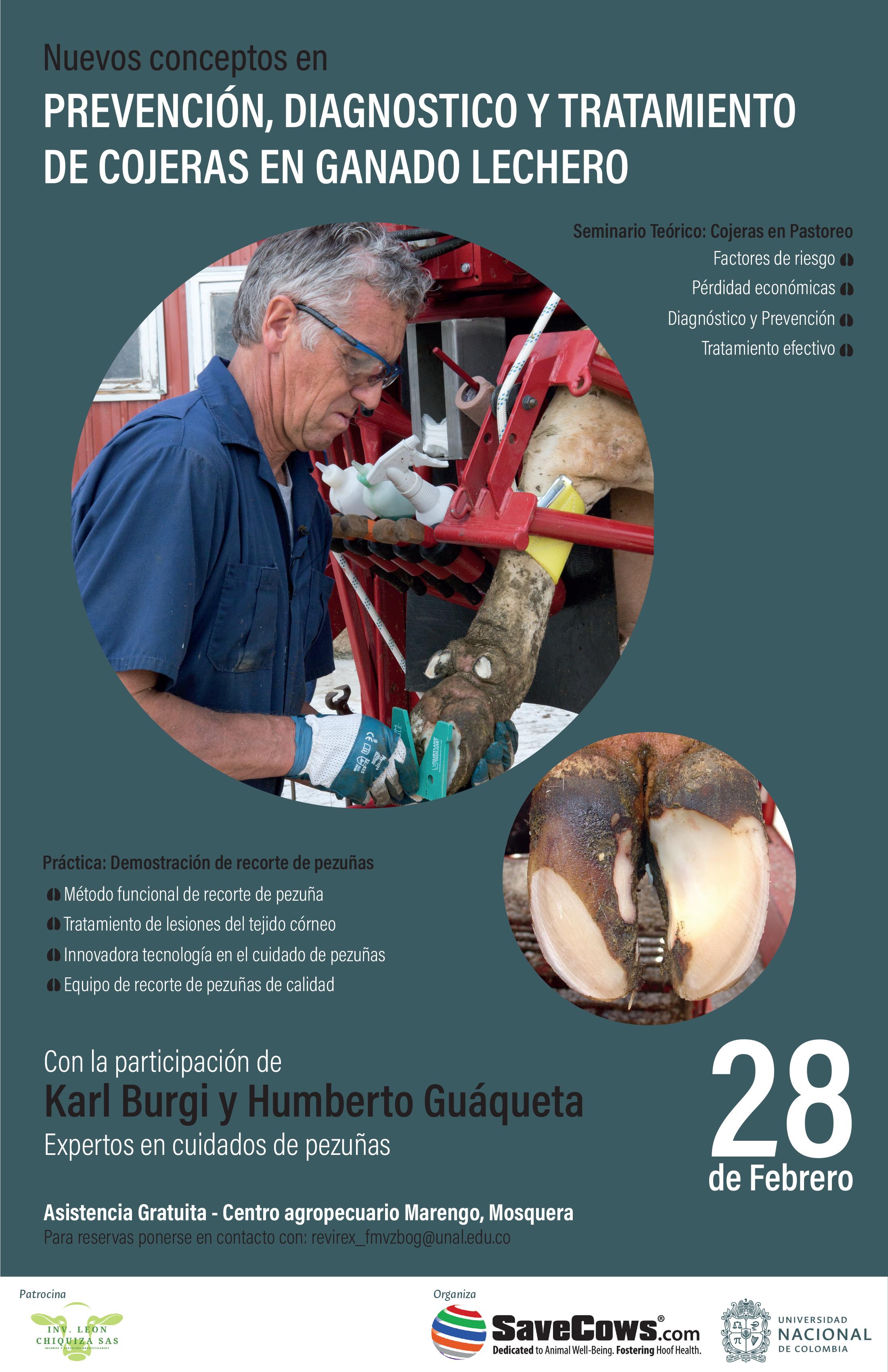 Seminario Teórico - Práctico Poster